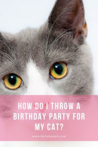 How Do I Throw A Birthday Party For My Cat?