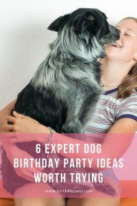6 Expert Dog Birthday Party Ideas Worth Trying