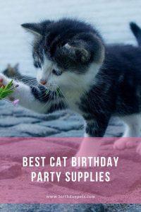 Best Cat Birthday Party Supplies