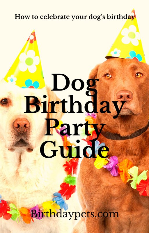 Dog Birthday Party Guide